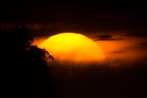 Free stock photo of golden sun, sun, sunset