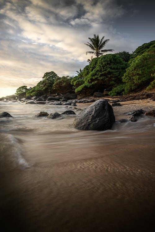Immagine gratuita di bagnasciuga, hawaii, isola, litorale