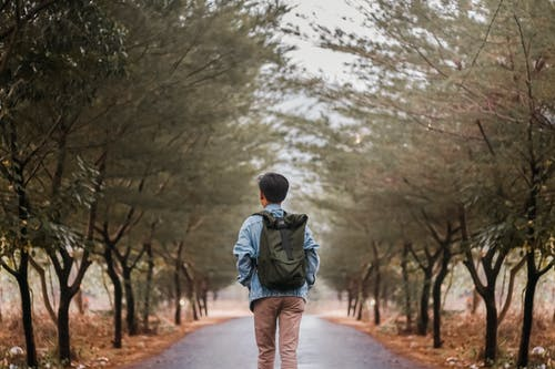 Photo of Man Walking on Road Near Trees