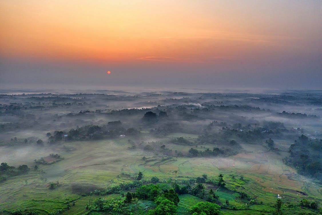 åkermark, dimma, dimmig