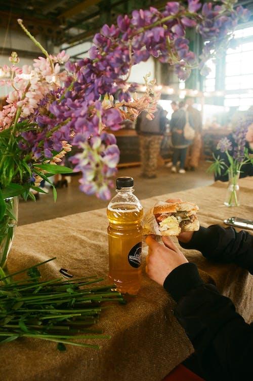 Fotobanka sbezplatnými fotkami na tému aromatický, fľaša, flóra, hamburger