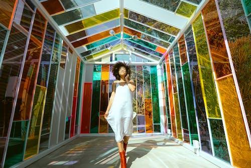 Kostnadsfri bild av afrikansk amerikan kvinna, afrikansk kvinna, ansiktsuttryck, färgrik