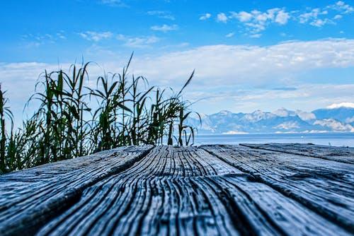 Foto profissional grátis de antalya, beleza na natureza, lado do mar, mar