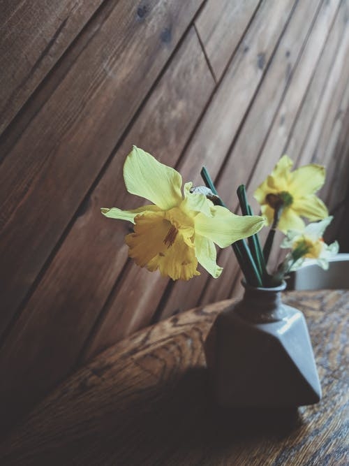 Yellow Lilies in Vase on Top of Wooden Table