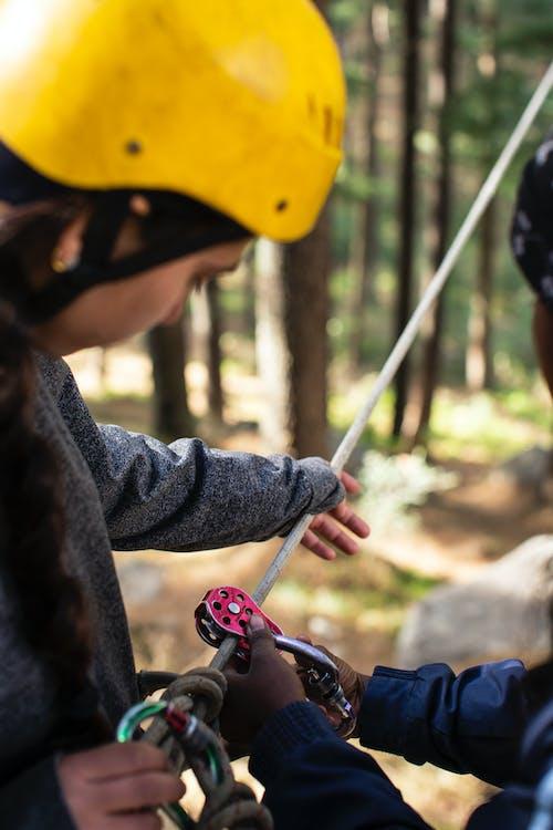 Imagine de stoc gratuită din acțiune, agrement, arbori, aventură