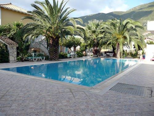 希臘, 户外泳池, 游泳池 的 免费素材照片