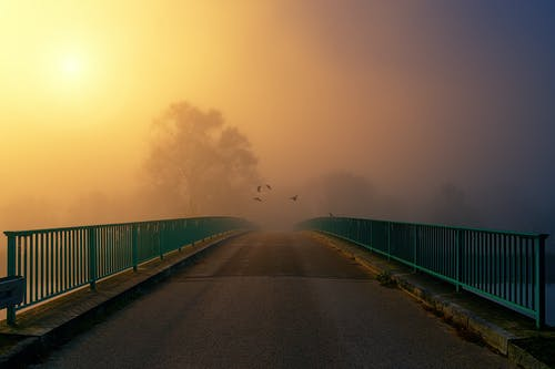 Kostnadsfri bild av asfalt, bro, dimma, dimmig