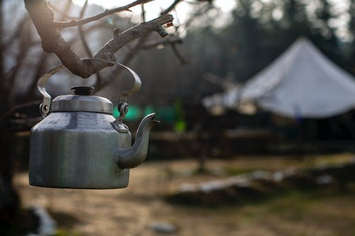 Selective Focus Photography of Kettle Hanging on Branch