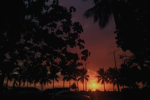 Foto stok gratis bayangan hitam, Filipina, jalan yang sibuk
