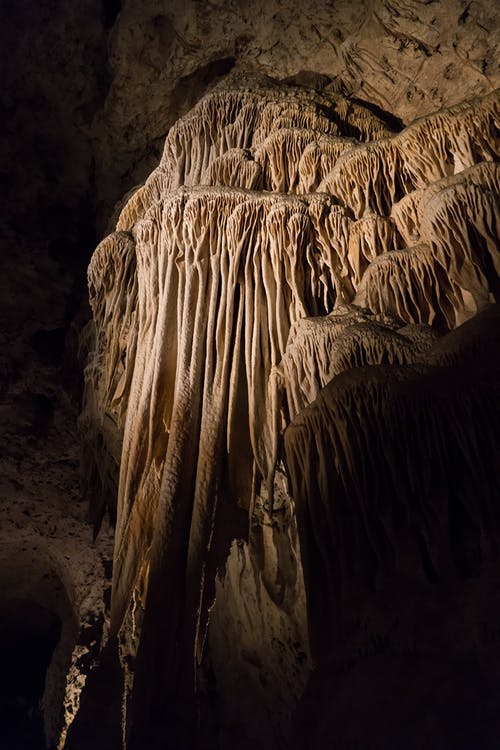 Free stock photo of bat, carlsbad, carlsbad caverns, cave