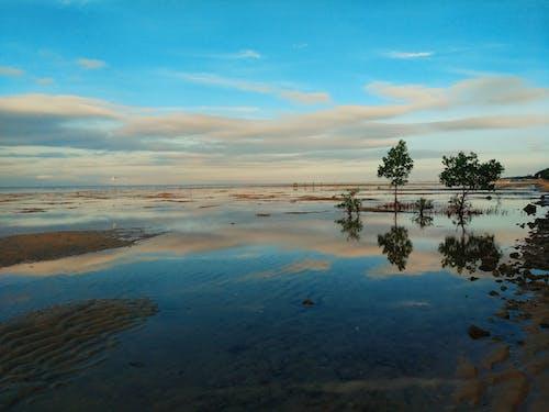Foto stok gratis air surut, cantik, cantik alami