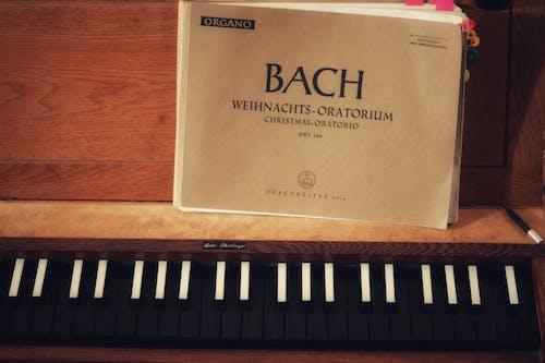 Darmowe zdjęcie z galerii z książka, muzyka, muzyka kościelna, pianista
