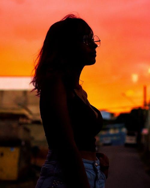 Gratis stockfoto met achtergrondlicht, dageraad, iemand, mevrouw