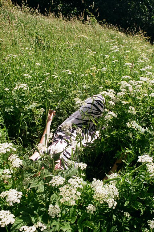 Woman Lying in the Middle of a Flower Field