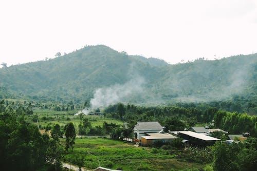 增長, 家, 山, 山谷 的 免费素材照片