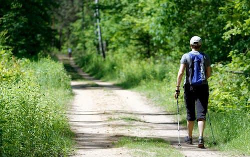 Fotobanka sbezplatnými fotkami na tému cestička, chlapec, chôdza, človek