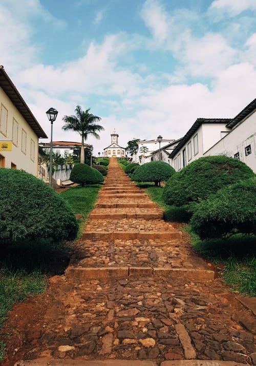 Empty Pathway Leading To Houses