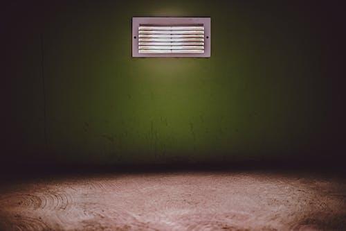原本, 地板, 壁紙, 棕色 的 免费素材照片