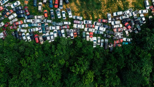 Top View Photo of Cars Near Trees