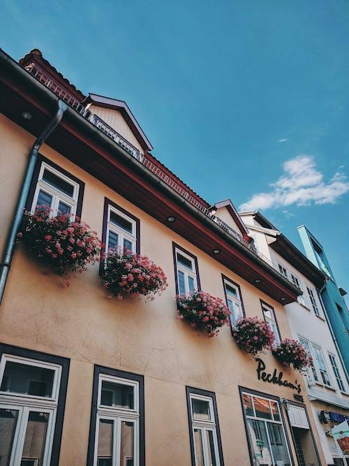 Foto stok gratis Arsitektur, bangunan, fasad, pandangan