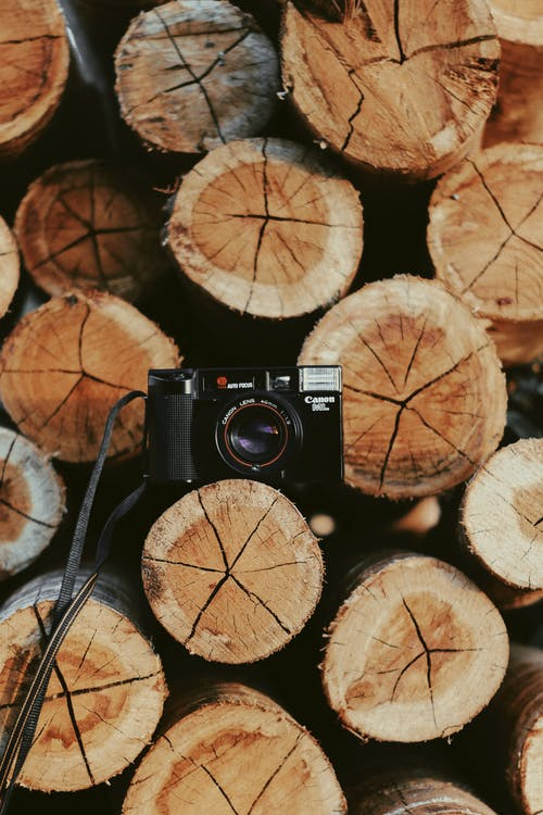 Photo of Canon Camera On Wooden Log