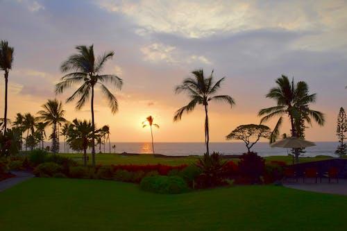 Foto stok gratis hawaii, matahari terbenam, vog