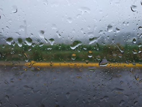 비, 비 내린 후의 무료 스톡 사진