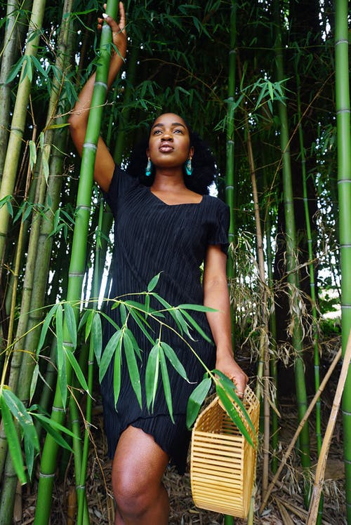 Kostenloses Stock Foto zu afrikanische frau, afroamerikaner-frau, bambus, bambus-bäume