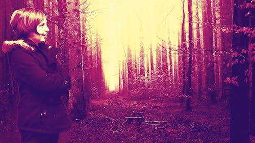 Immagine gratuita di alberi, cappotto, faccia, foresta