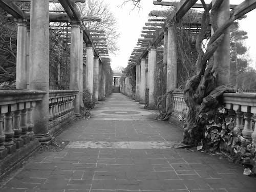 Ilmainen kuvapankkikuva tunnisteilla hampstead heath, lontoo, lontoo 2012, nostalginen