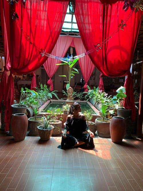 Fotobanka sbezplatnými fotkami na tému angkor wat, cestovanie, chrám, juhovýchodná ázia