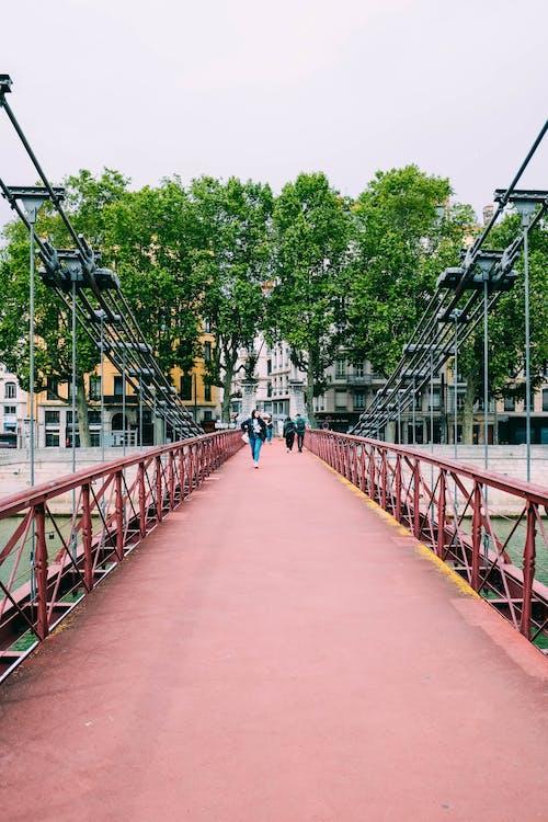 açık hava, ağaçlar, altyapı, dış mekan içeren Ücretsiz stok fotoğraf