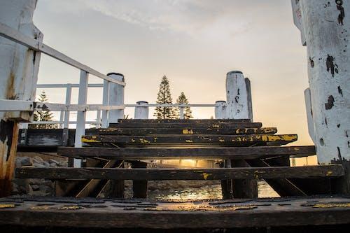 Darmowe zdjęcie z galerii z architektura, drewniany pomost, drzewa iglaste, kamienie
