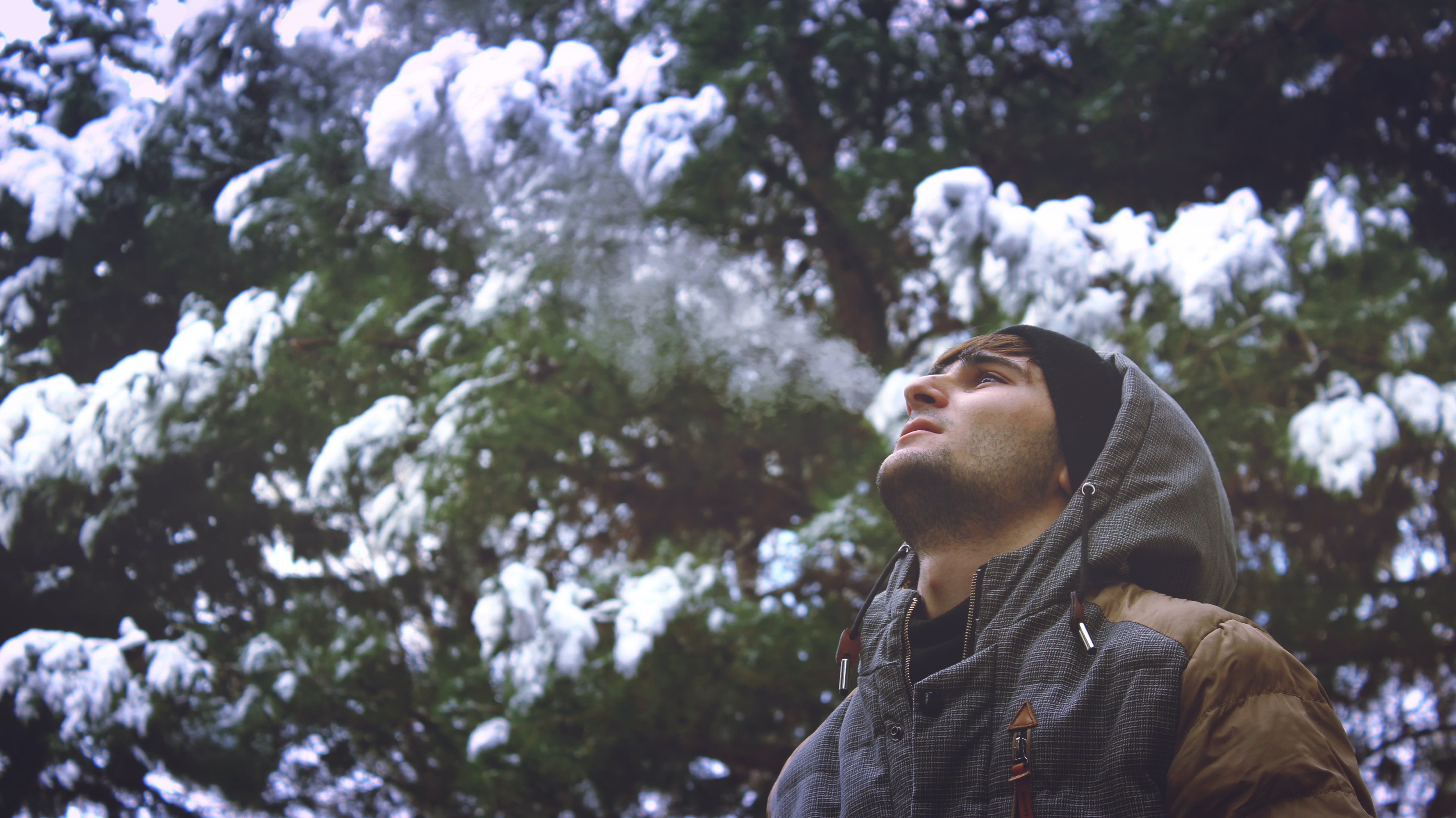 Young Man Looking Up in Forest