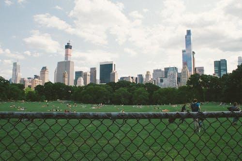 Foto d'estoc gratuïta de arquitectura, brooklyn, carrer, Central park