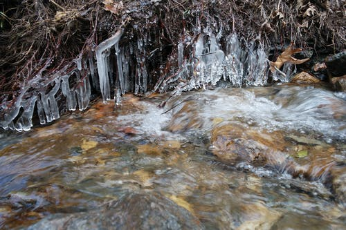 Free stock photo of ice, stalactite, water, winter