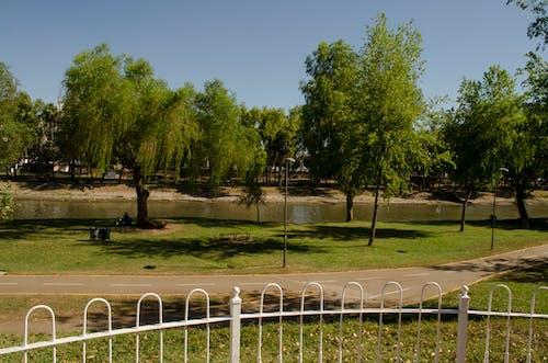 Fotos de stock gratuitas de parkour, parque