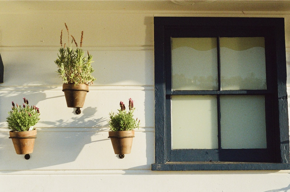 flowerpots, house, window