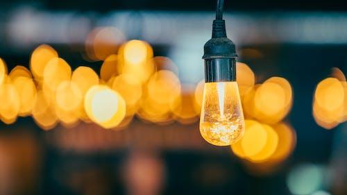 불이 붙은, 유리 제품, 전구, 전기의 무료 스톡 사진
