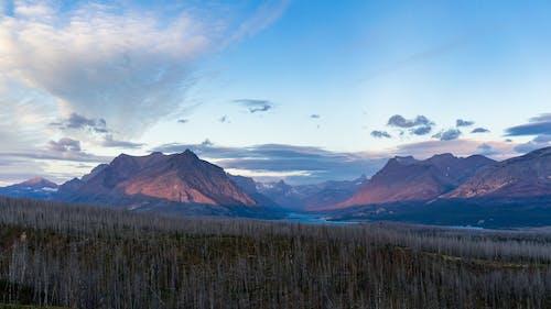 Immagine gratuita di acqua, alba, ambiente, avventura