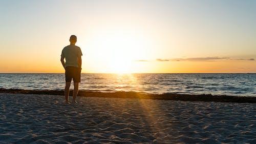 Darmowe zdjęcie z galerii z miami, sylwetka, wybrzeże, zachód słońca