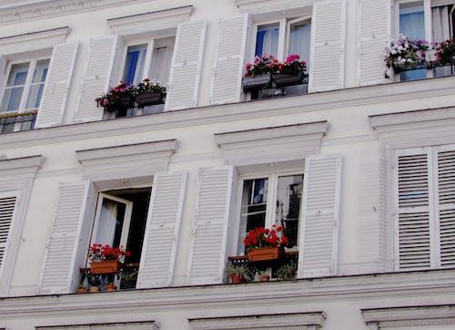巴黎, 巴黎的房子, 巴黎街, 快門 的 免費圖庫相片
