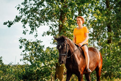 Photo of Woman Riding Horse Near Tree