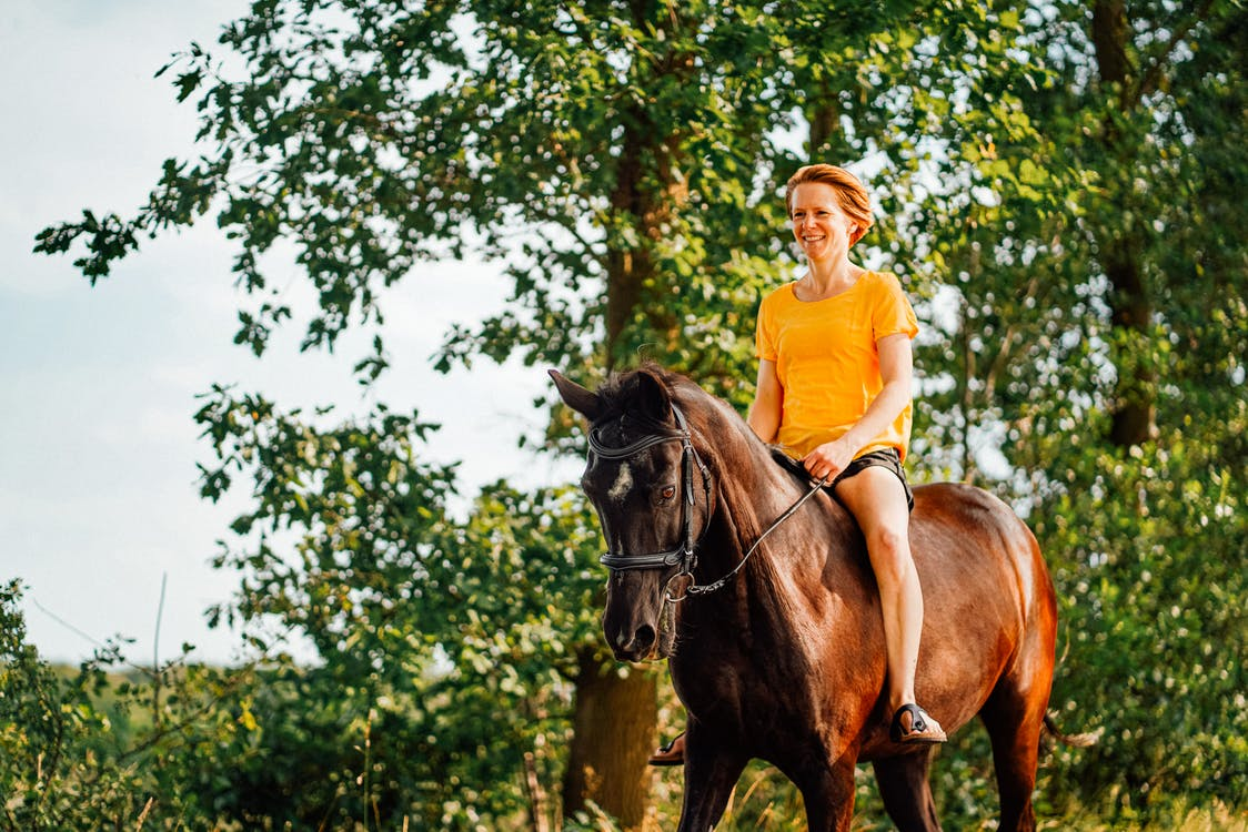 Photo of Woman Riding Horse Near Tree