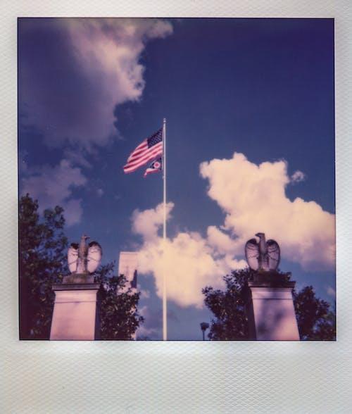 Darmowe zdjęcie z galerii z amerykańska flaga, drzewa, flaga, flaga usa