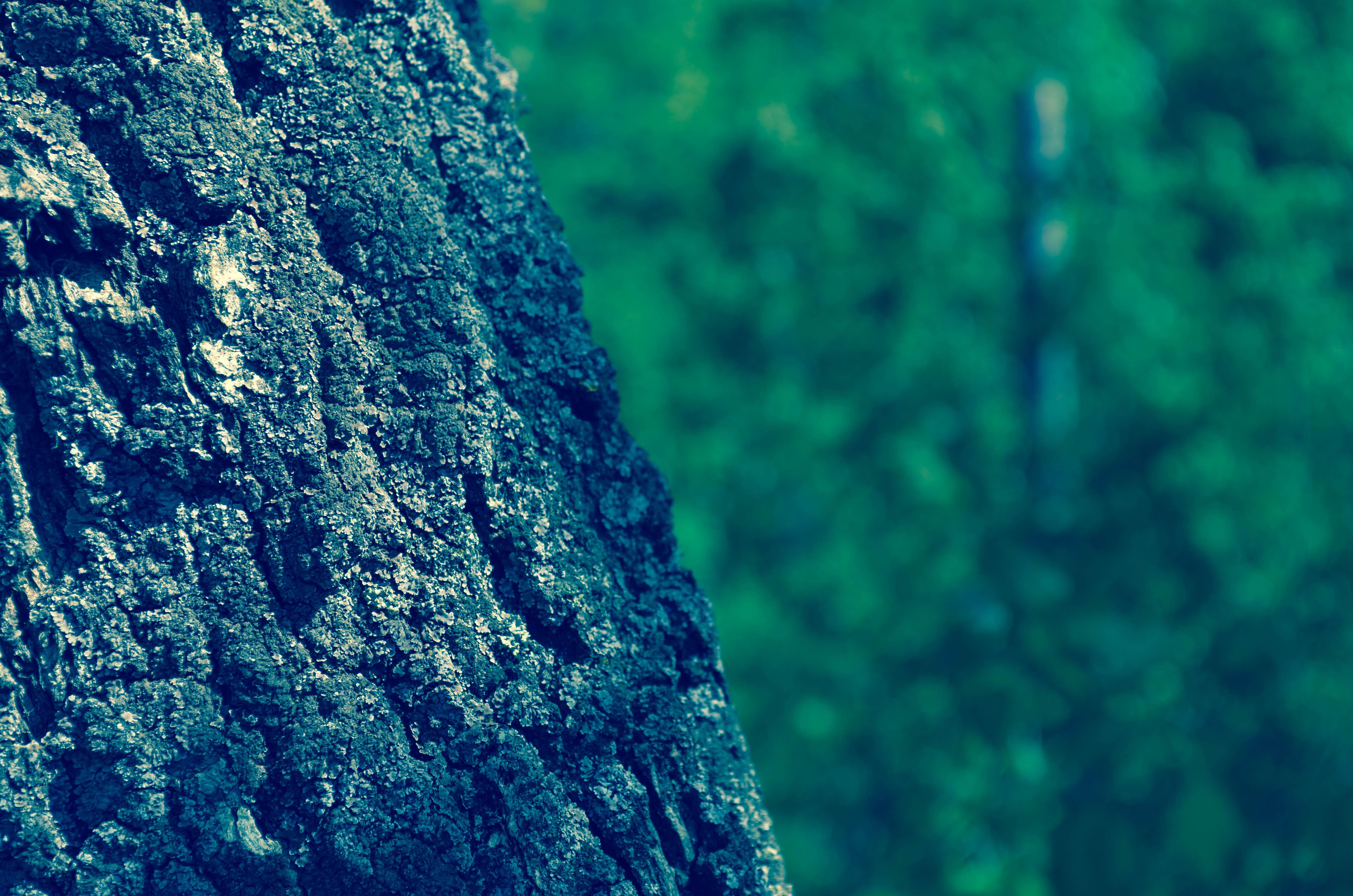 Blur Picsart Coolest Hd Backgrounds Www Picsbud Com