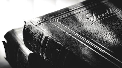 Immagine gratuita di copertina del libro, leggendo, letteratura, libri