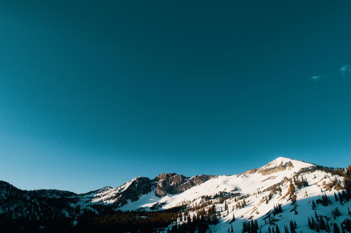 Pokryte śniegiem Góry I Drzewa
