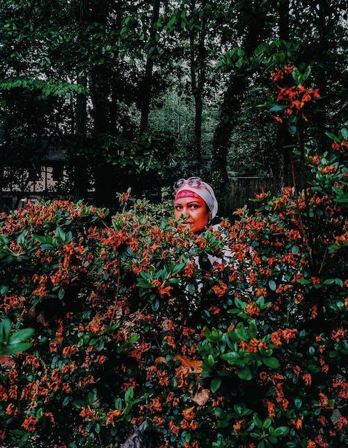 Fotobanka sbezplatnými fotkami na tému # červení a zeleňou, # ďaleko-view, #beautifulbackgrounds, #lady