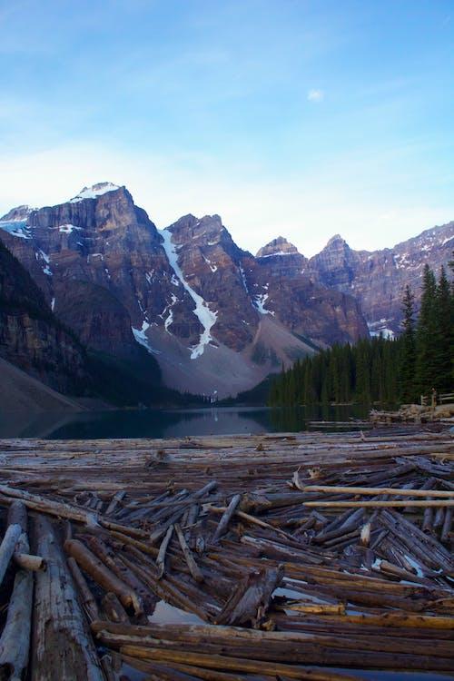 冬季, 冰碛湖, 加拿大, 天性 的 免费素材照片